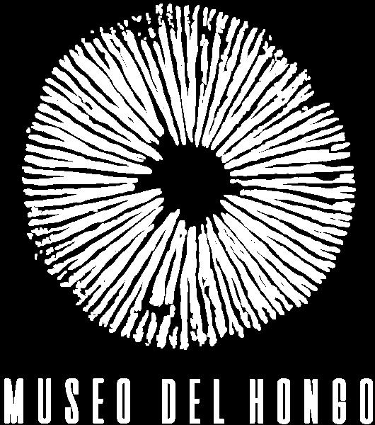 logo_landing_vw